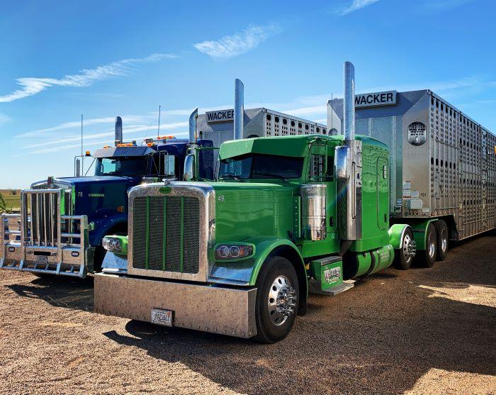 Mike Wacker Trucking Livestock Trucks