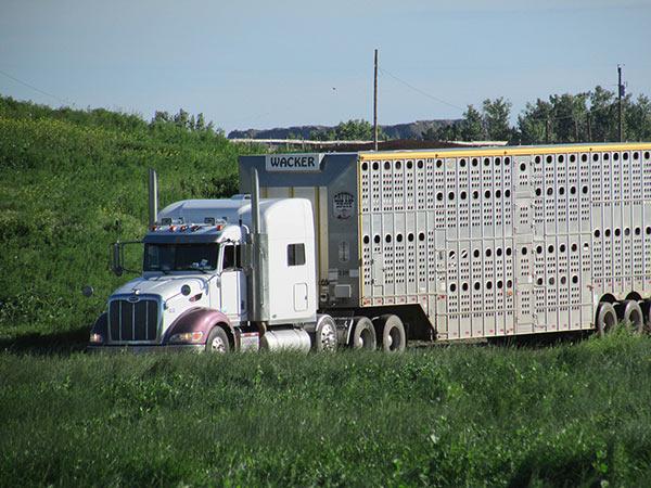 Wacker-Trucking-9-13_01