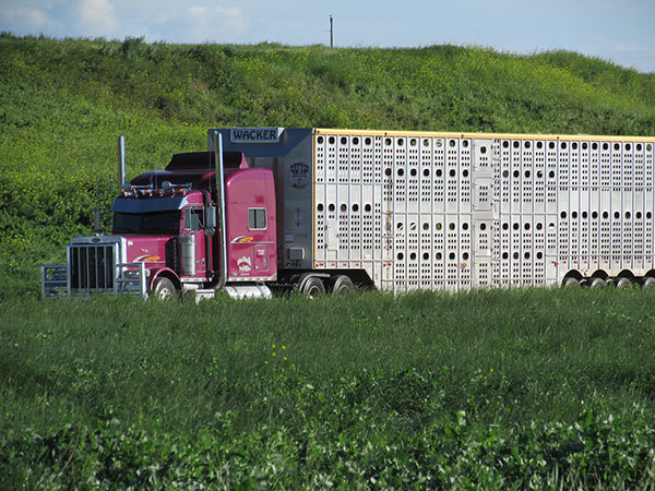Wacker-Trucking-9-13_02