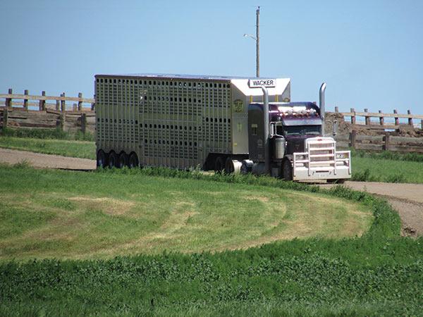 Wacker-Trucking-9-13_09